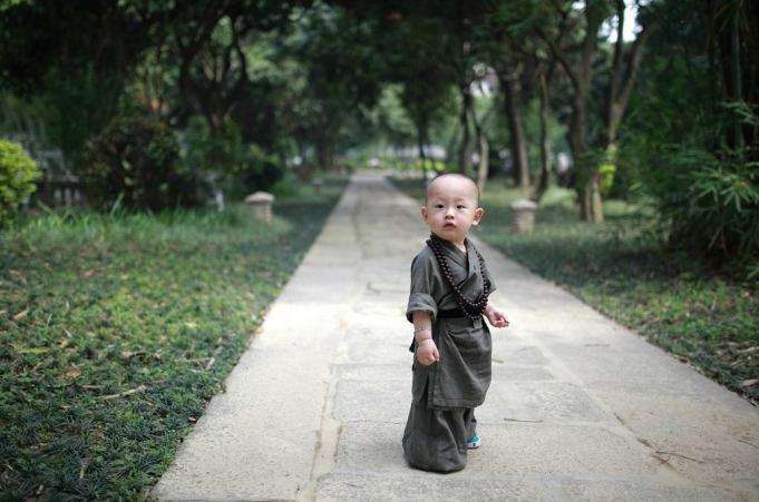 西禅寺の可愛い「小坊主」が人気...